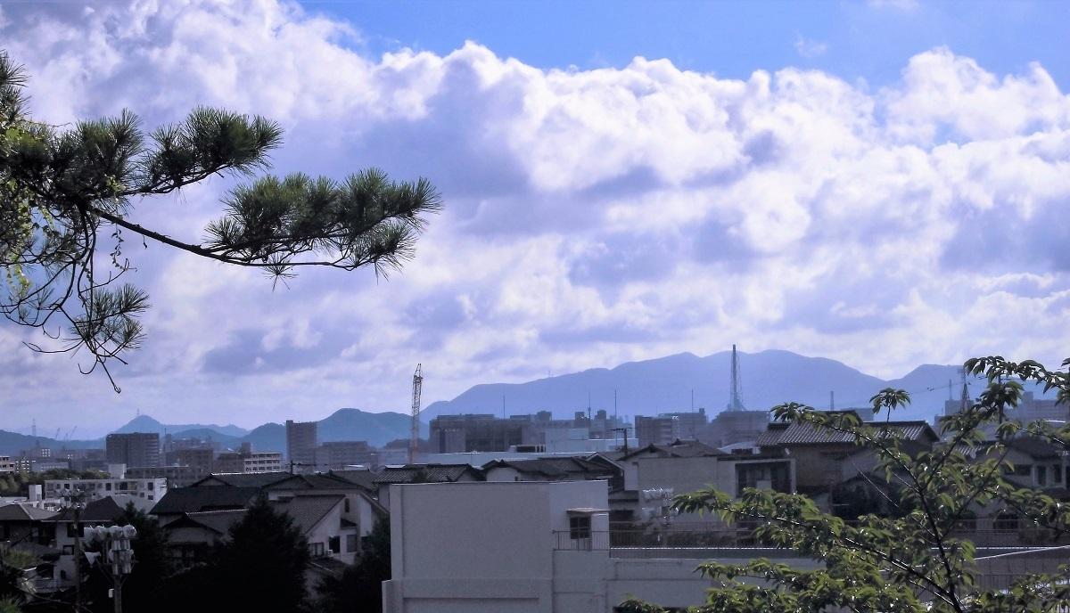 tobataku (3).JPG